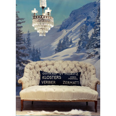 Ski Safari Destination Embroidered Cushion